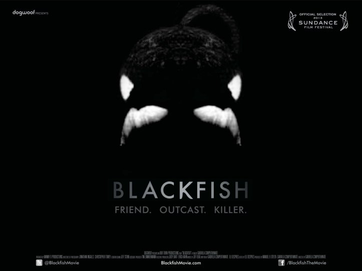 Blackfish ⓒ Dogwoof Documentaries