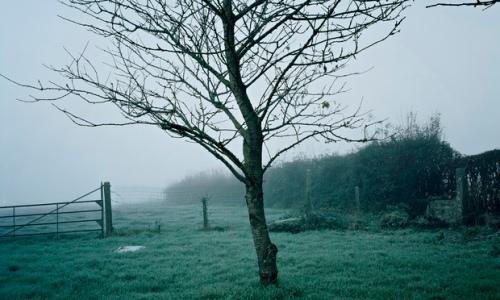 Chloe Dewe Matthews, 'Shot at Dawn', 2014