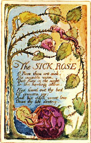 William Blake 'The Sick Rose'