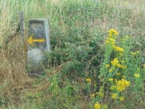 Image 6 - Yellow arrow