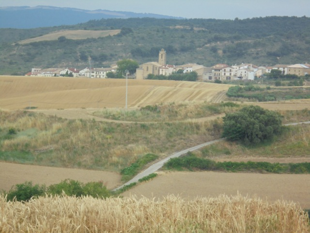 Image 7 - Camino today